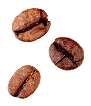 gain-de-cafe